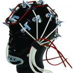 large EEG cap