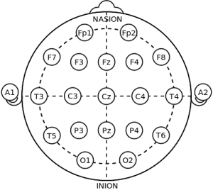 10-20_system_for_EEG